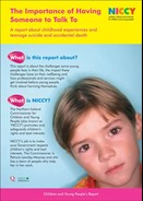 Adolescent Suicide Report (young persons) final Nov 12- cover.jpg